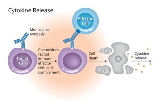Cytokine-release-1