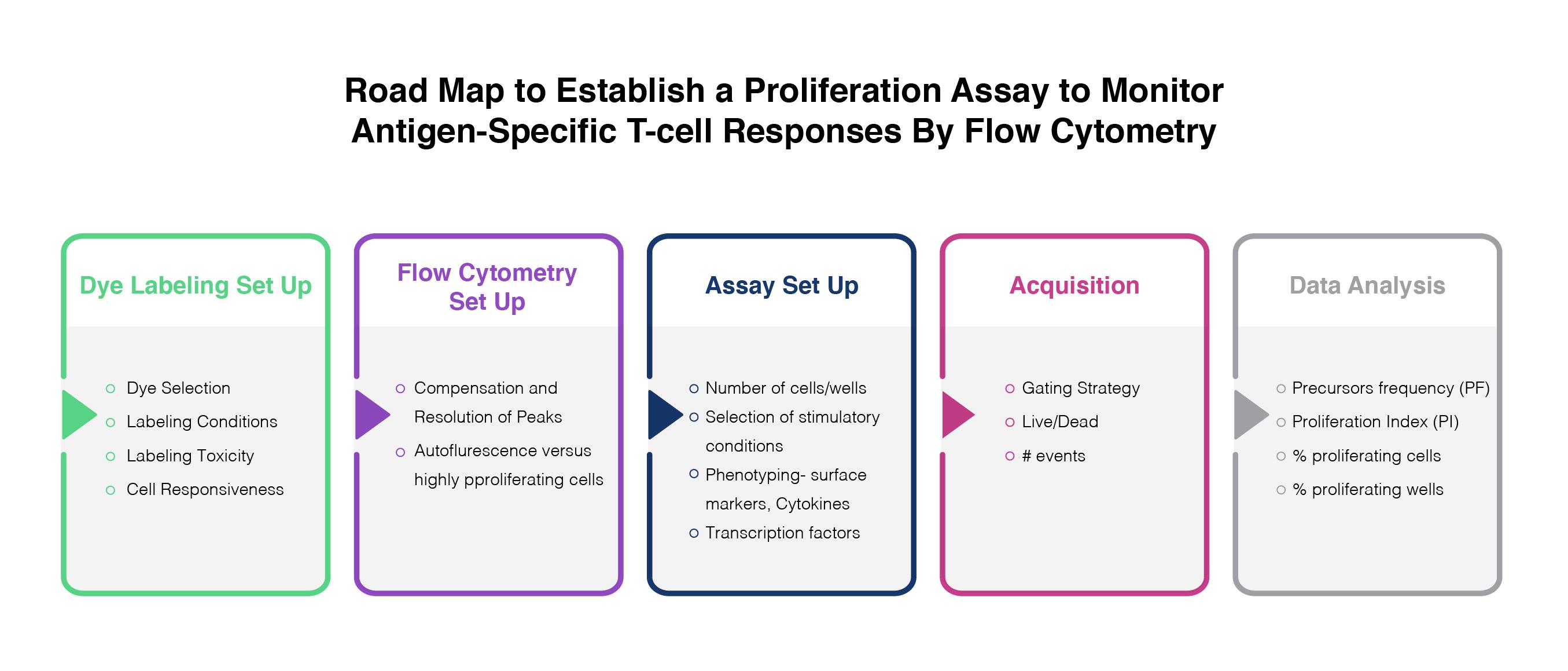 proliferation-assay