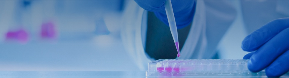 FlowMetric Cytometry Services | CRO Company
