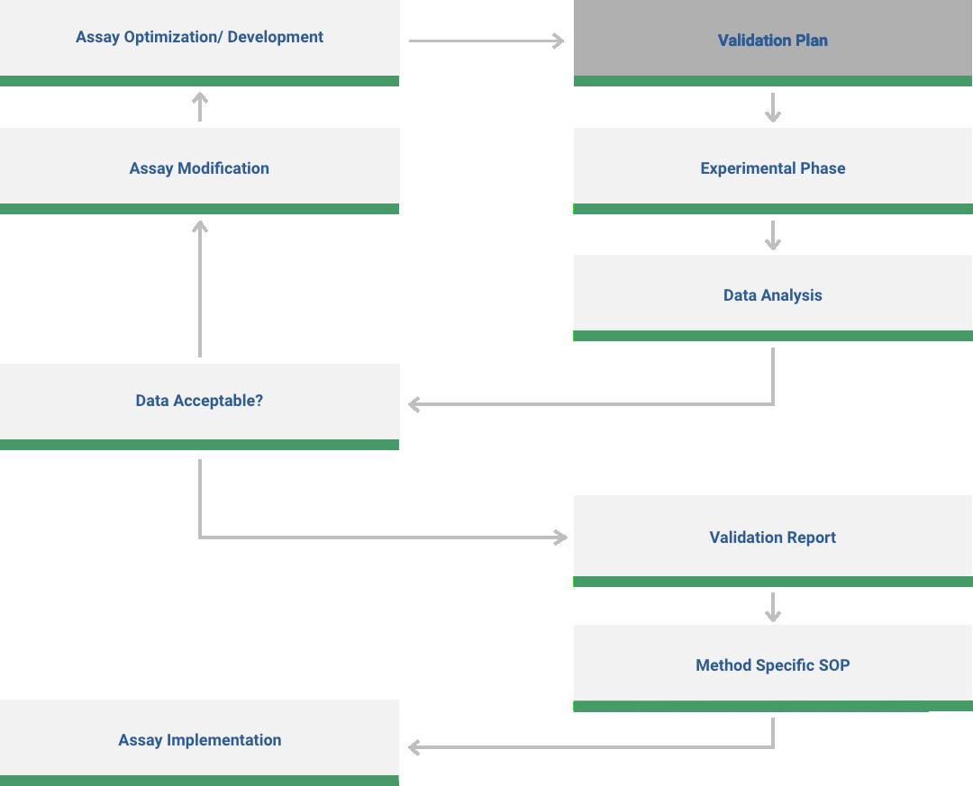 Validation Workflow Diagram